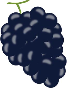 Grape (black)