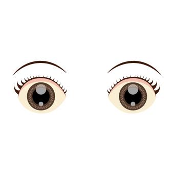 여성의 눈가 (홍채)