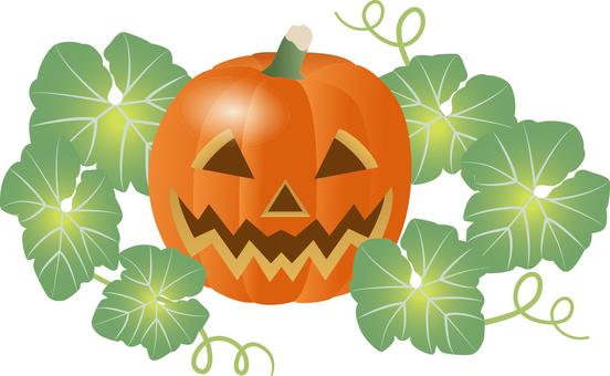 Cut _ pumpkin 5