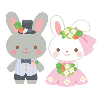 Wedding rabbit 1