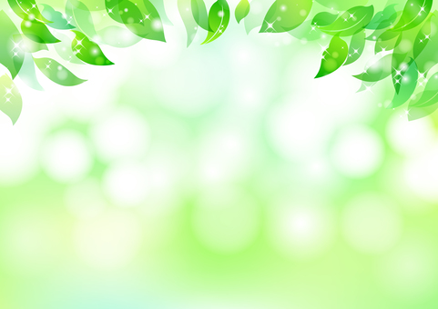 Fresh green material 9