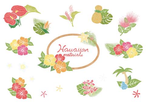 Hawaiian material