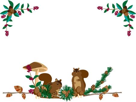 Squirrel, tree nuts, mushrooms