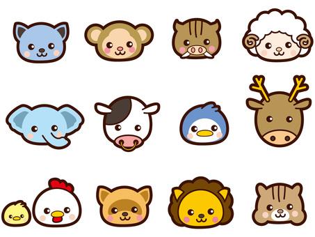 Cute animals' faces