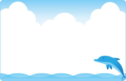 돌고래의 프레임