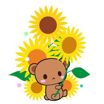 Bear and sunflower illustration