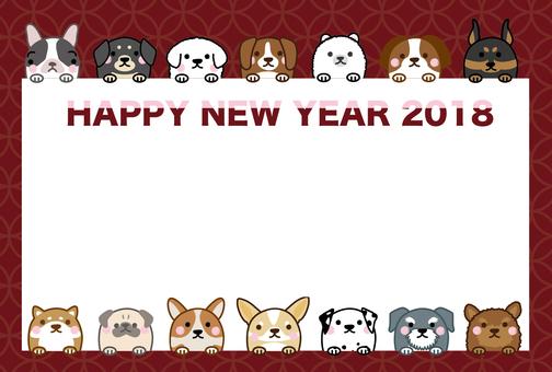 2018_犬6