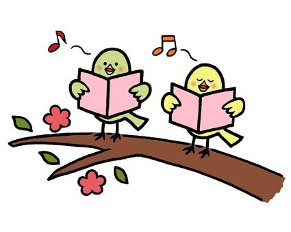 Kotori Chorus