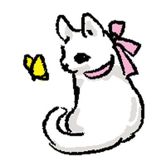 White cat and butterfly