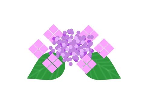 Gaku hydrangea (purple)