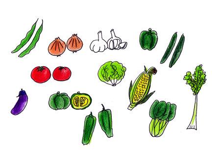 Summer vegetables 2
