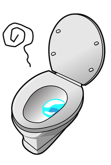 서양식 화장실 - 포장