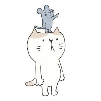 ネコと頭の上のネズミ