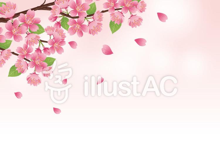 春リアルな桜の枝素材散る花背景素材01イラスト No 724599無料