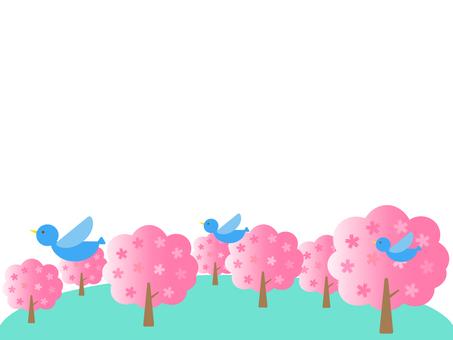 벚꽃 나무와 파랑새
