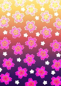 Sakura - wallpaper