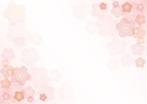 Pflaumenblütenansicht