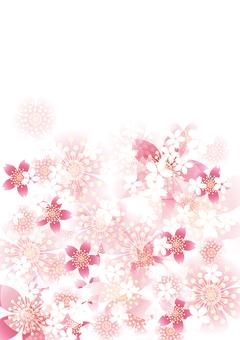 벚꽃의 꽃 109