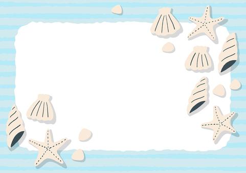 貝殼水平的背景框架