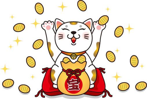 動物/幸運的貓