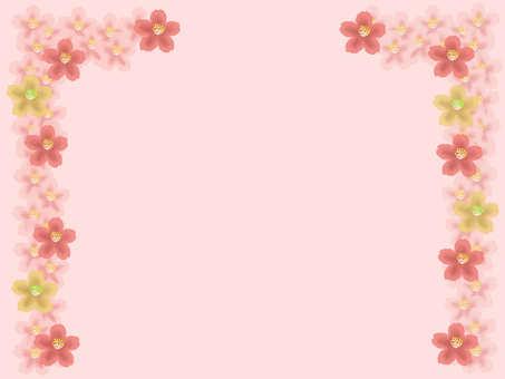Cherry Blossom Gate 2