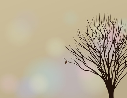 Dead tree _ dead leaves