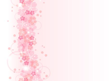 Sakura 79