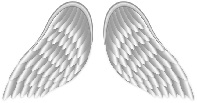Silver Wing / SilverWing