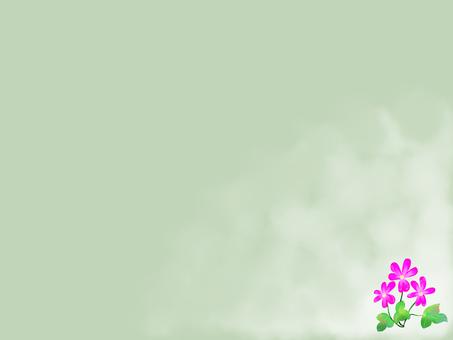 雪割草 (오오미스미소우) 프레임