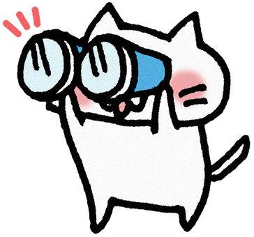 Binoculars cat