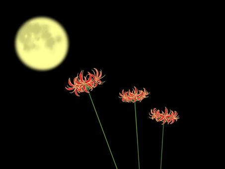 Moon and Higanbana