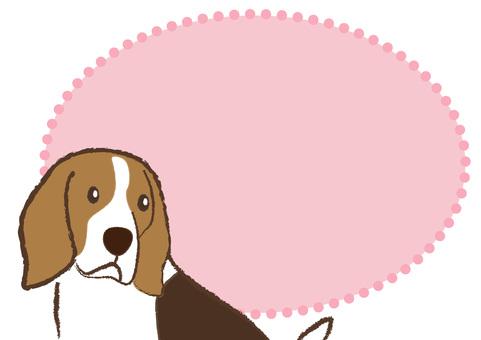 dog_ Beagle dog 14