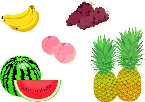 여름 과일