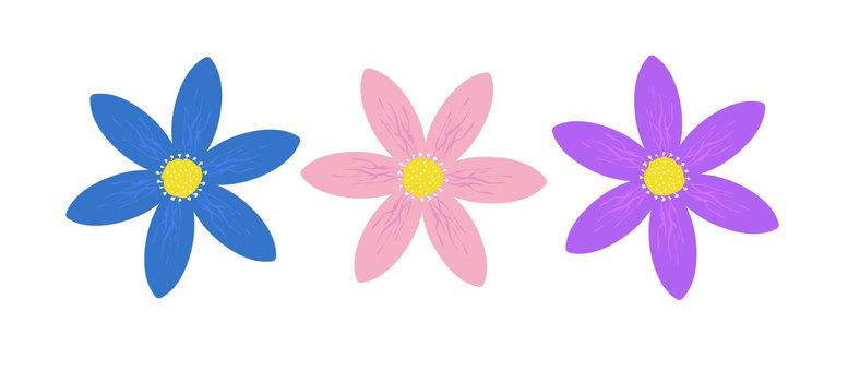 Material flower 1