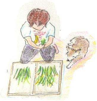 Dog and garden work