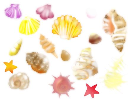 Shellfish back