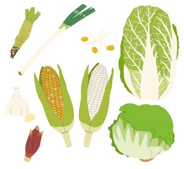 Vegetables (pale vegetables) 2/3 * Borderless