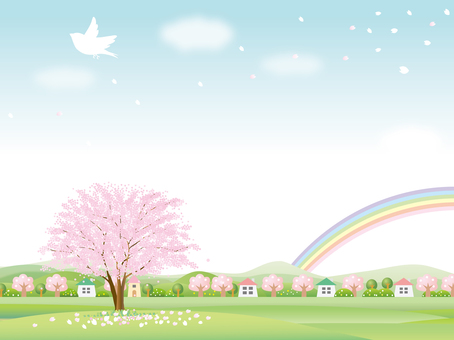 Cherry blossoms and rainbow spring background