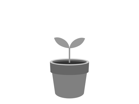 Buds from a flower pot (monochrome)