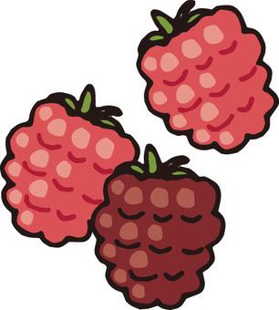 Fruit (2 kinds of berries)