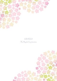Cherry Blossoms Sakura 2 Vertical