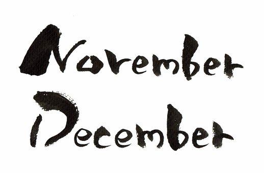 11 월 11 월