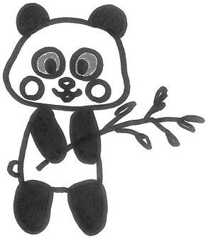 Panda kun giant panda