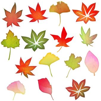 秋の落ち葉セット