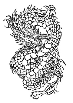 Dragon drawing illustrations