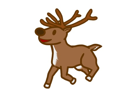 Ordinary reindeer