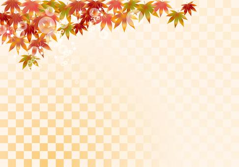 Autumn leaves 170