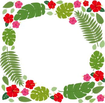 Tropical plant regular square frame