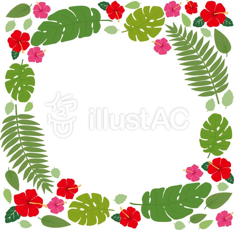 熱帯植物の正四角形フレームのイラスト