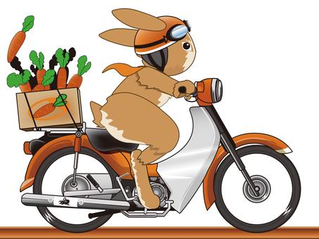 Usagi's ride